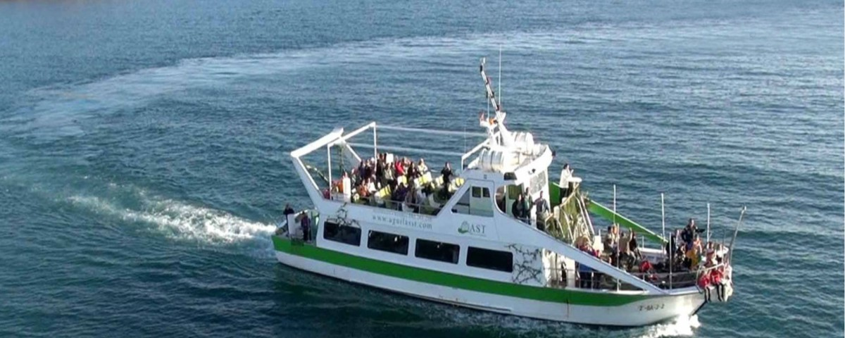 don-pancho-barco